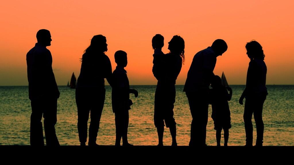 Plek binnen gezin